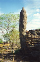 A giant termite mound at the Rock Holes, Kakadu
