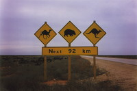 A warning sign for camels, wombats and kangaroos