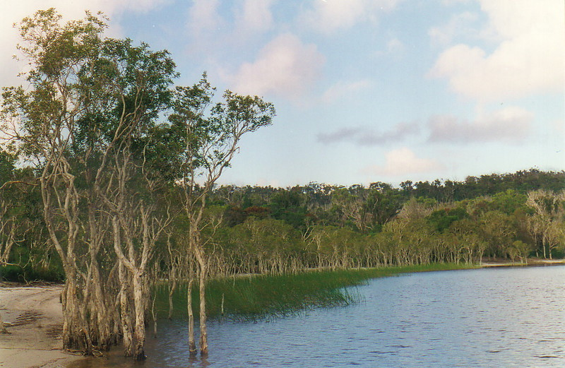 Brown Lake, Stradbroke Island