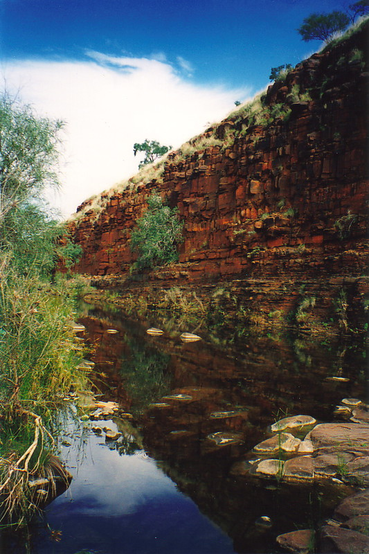 Scenery along Pillinginni Creek