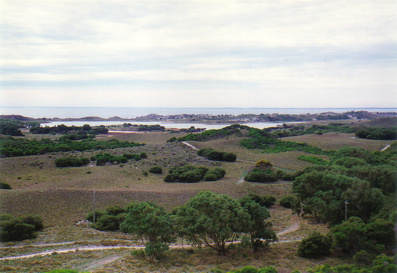 The gentle landscape of Rottnest Island