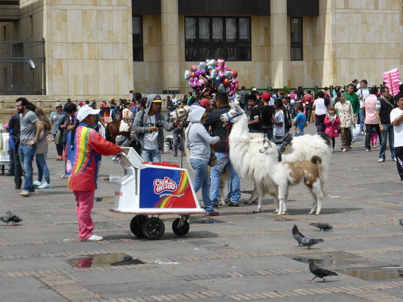 Ice creams and llamas in the Plaza de Bolívar