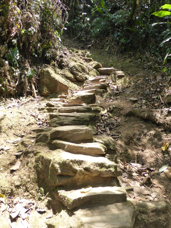 Final access to the Lost City is up a steep stone staircase with 1200 steps