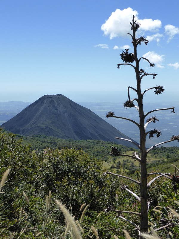 The views of Volcán Izalco from the trail are breathtaking