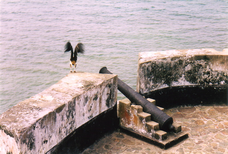 Cannons at Fort St Anthony, Axim