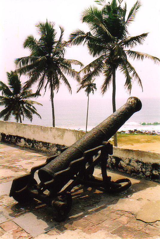 A cannon beneath a palm tree