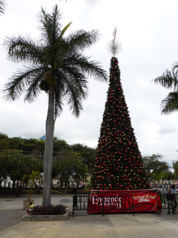 The Christmas tree in Parque Central