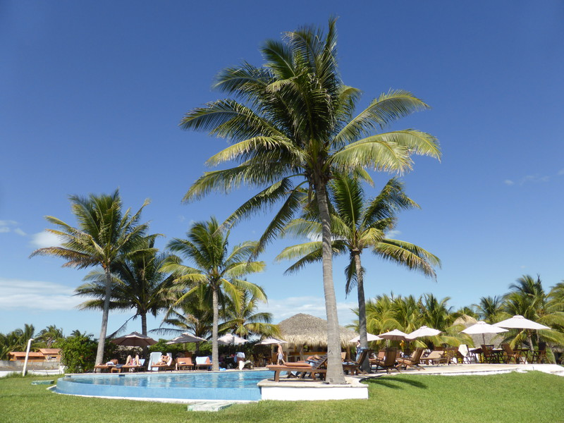 The lovely beachside infinity pool at Dos Mundos