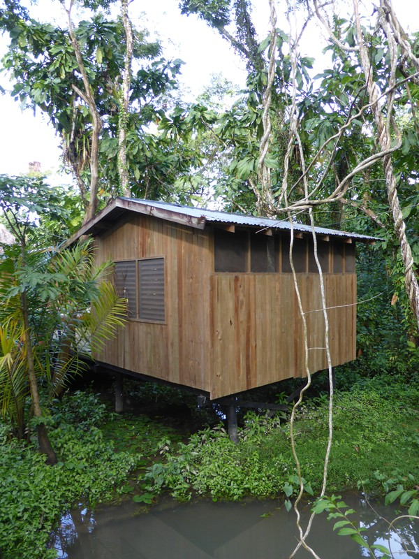 Our cute little swamp hut in Hotel Kangaroo