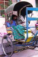A rickshaw-wallah sleeping in his rickshaw