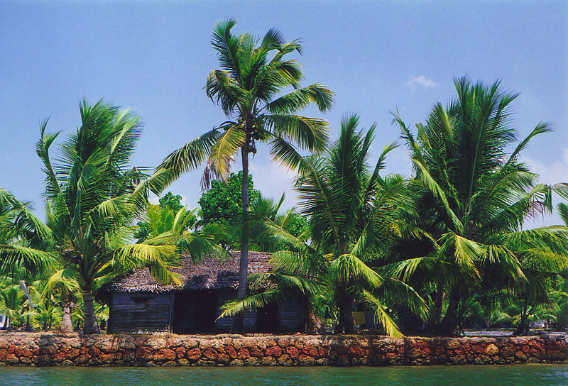 A small house tucked away in the backwaters of Kerala