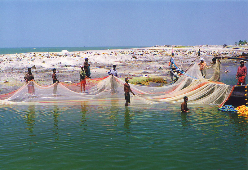 Men bringing in the fishing nets