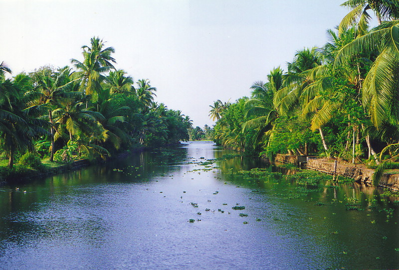 The placid backwaters of Kerala