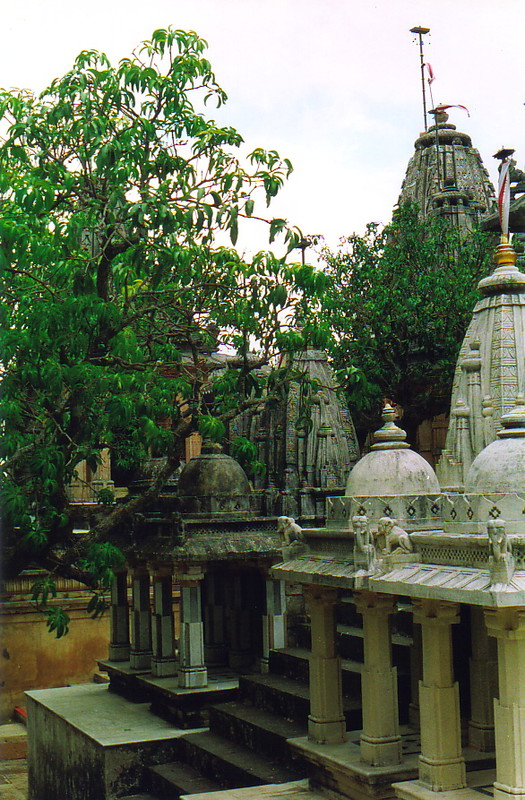 Temples and trees at Palitana
