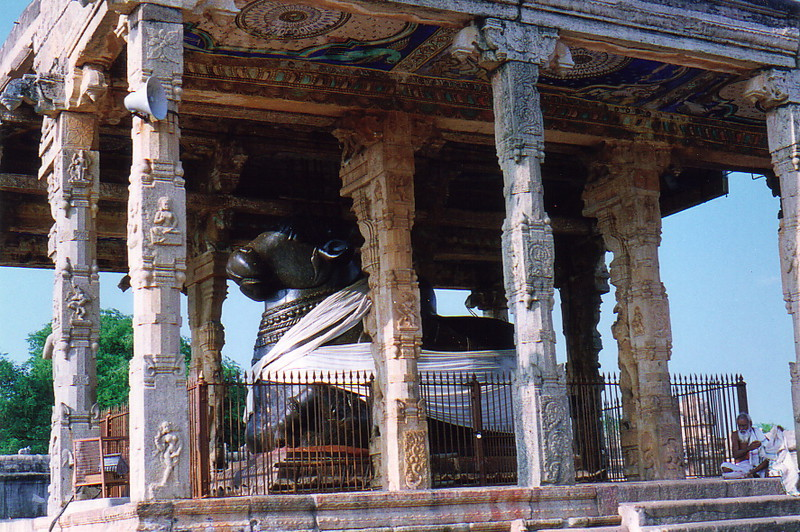 The sacred Nandi in Brihadesvada Temple