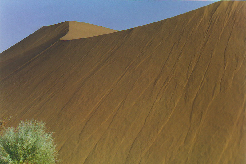 Desert dunes with interesting texture