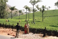 Tourists photographing the tea pickers near Munnar
