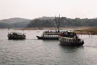 The wildlife cruise on Periyar Lake