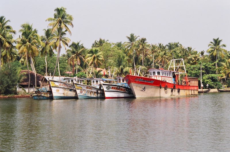 Brightly coloured boats along the backwaters