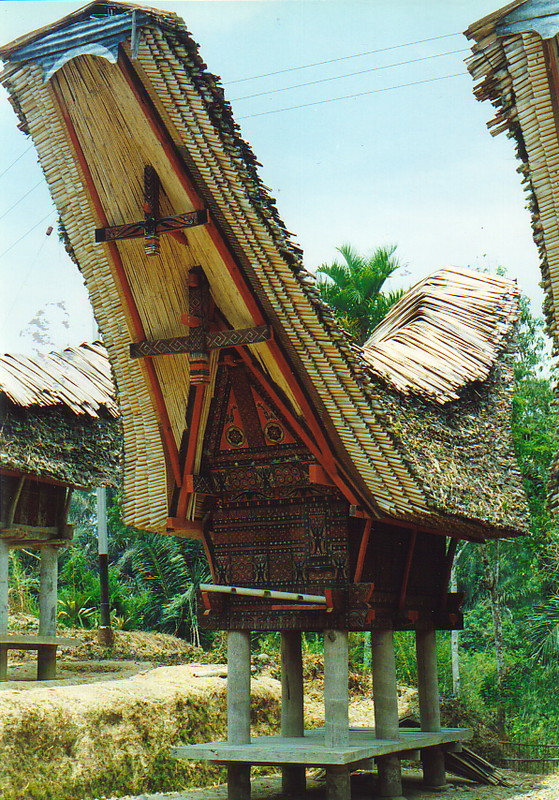 A tongkonan house
