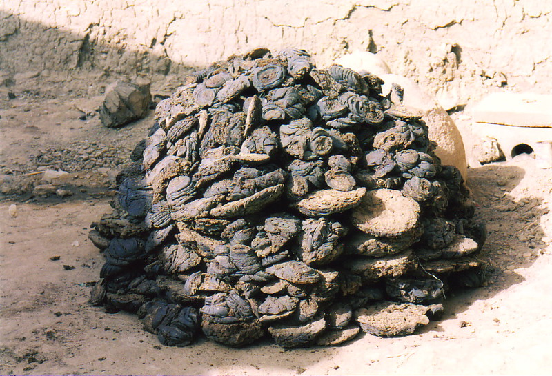 A pile of dung drying in the sun