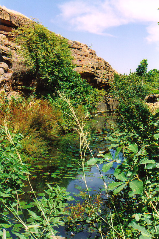 A rock pool in Dogon Country