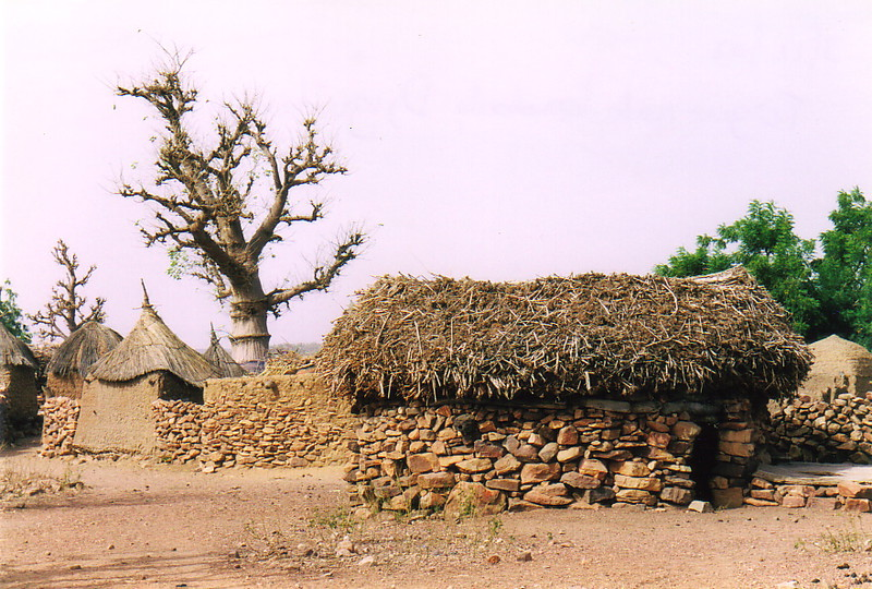 A granary, a boabab and a togu-na in Djiguibombo