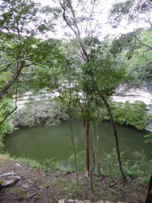 The Sacred Cenote