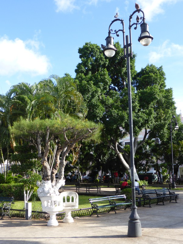 The pretty park in the middle of Plaza Grande