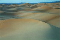 Dunes in the Sahara near Merzouga