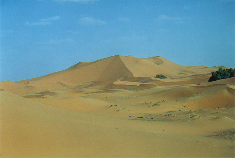 The dunes of the Erg Chebbi