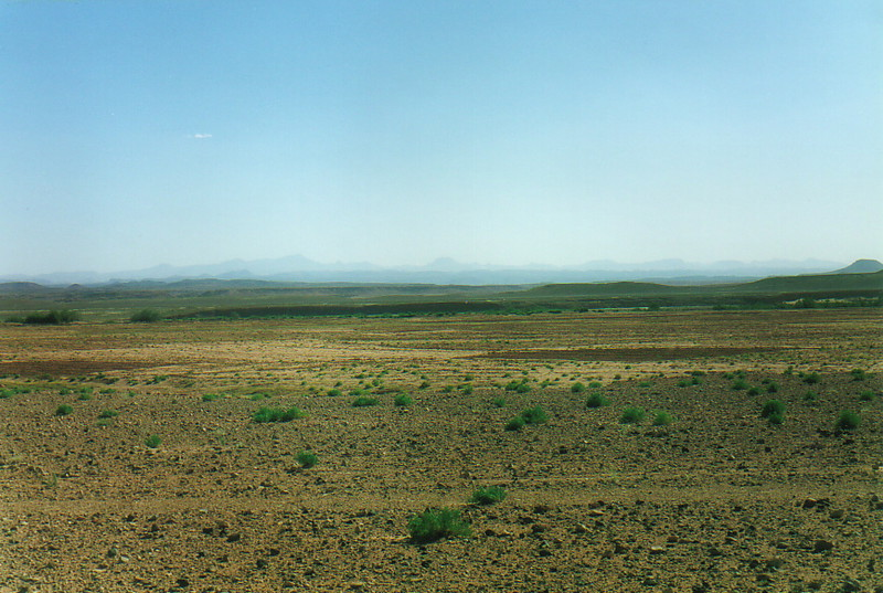 The flat landscape of the hammada